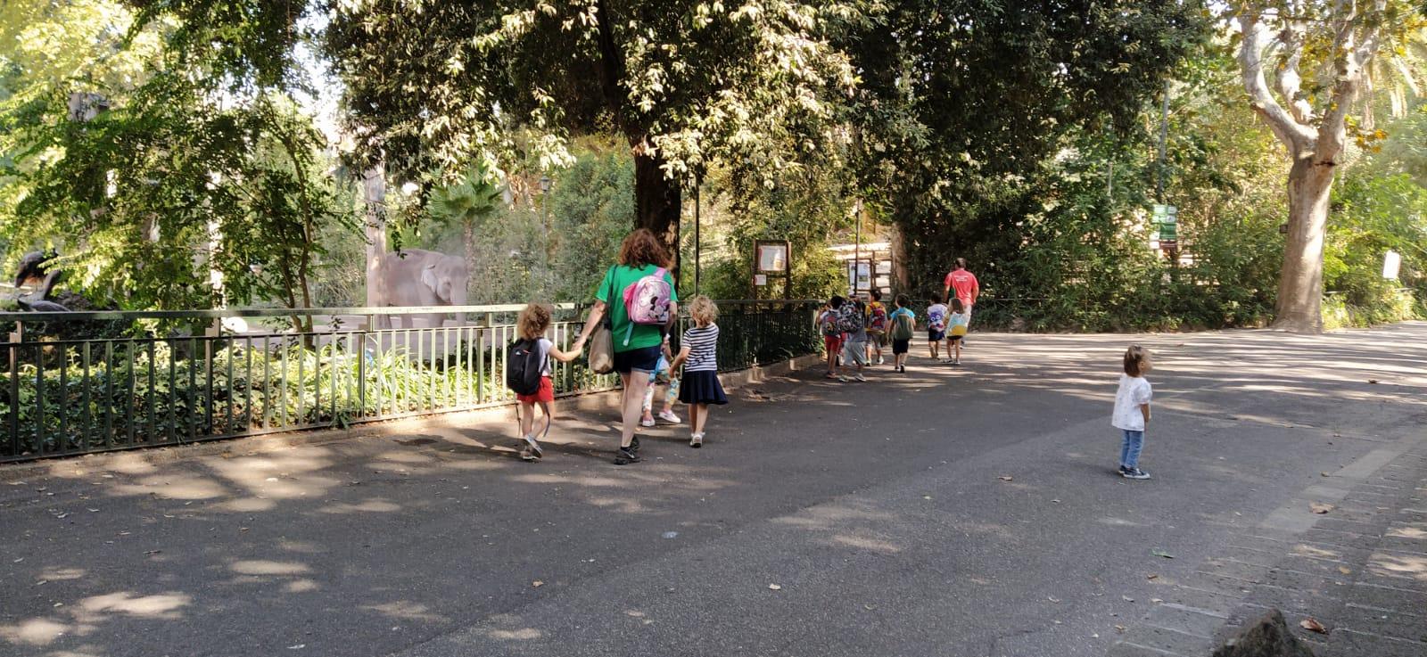 Scuola infanzia in visita al Bioparco di Roma
